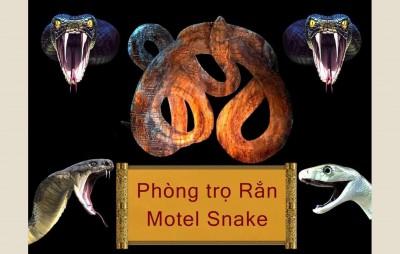 phong-khach-mr-quan-motel-snake